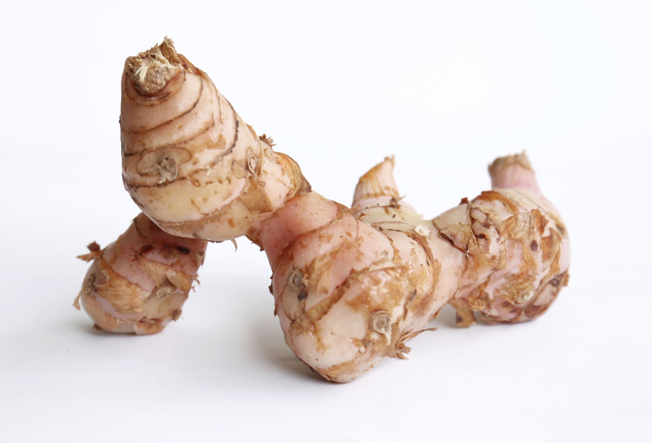 What is galangal and how do i use it food republic for Galangal living